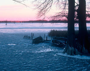 MC 183 Frozen Reelfoot